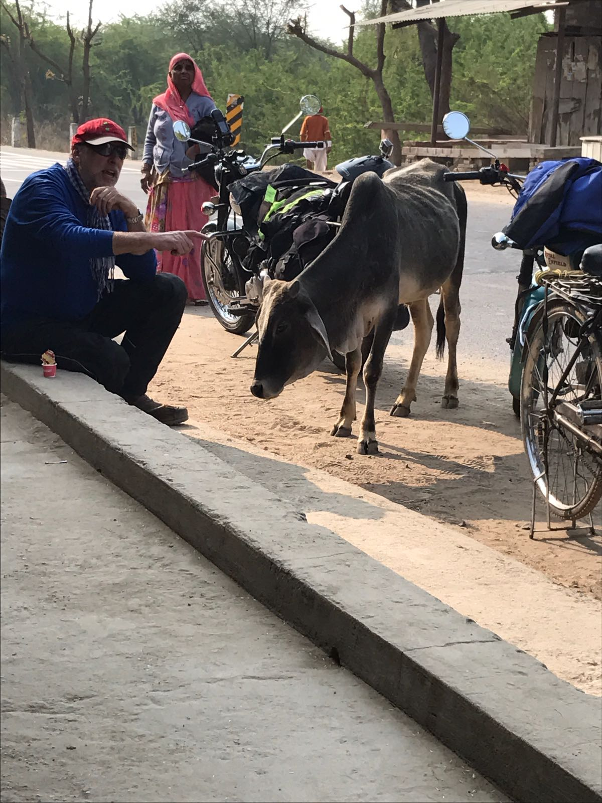 The Journey to India Part 3: The Towns, The People, The Cows
